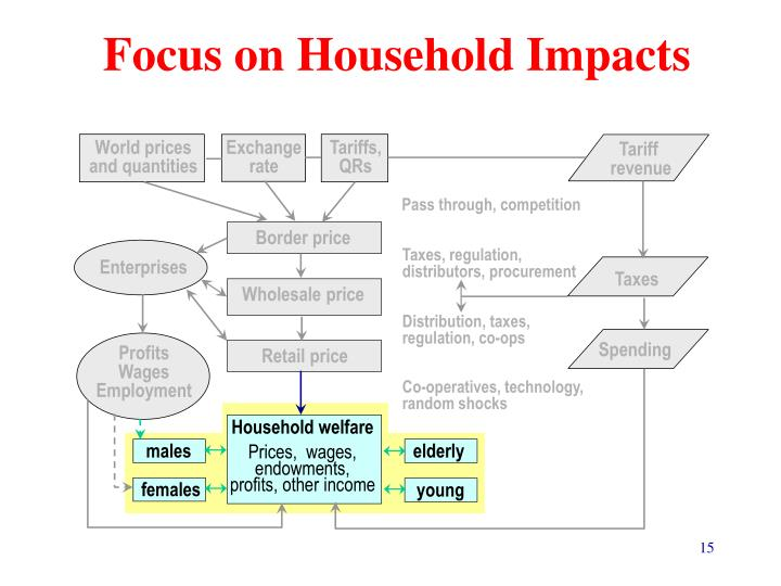 Focus on Household Impacts