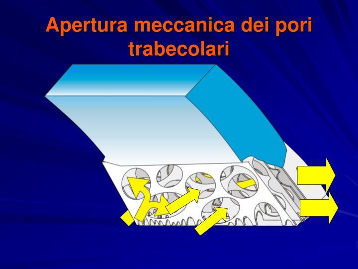 Apertura meccanica dei pori trabecolari