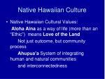 native hawaiian culture