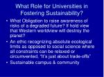 what role for universities in fostering sustainability
