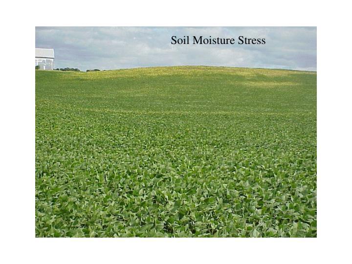 Soil Moisture Stress