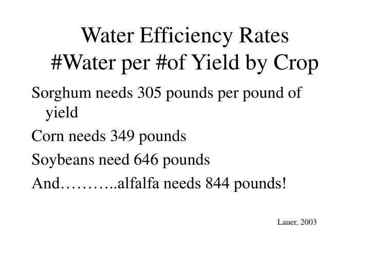 Water Efficiency Rates