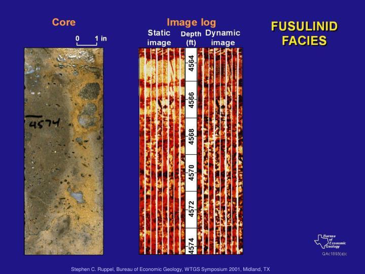 Stephen C. Ruppel, Bureau of Economic Geology, WTGS Symposium 2001, Midland, TX