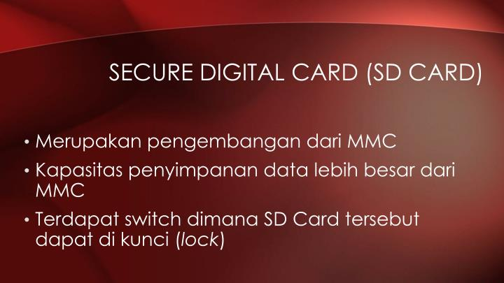 Secure Digital Card (SD Card)