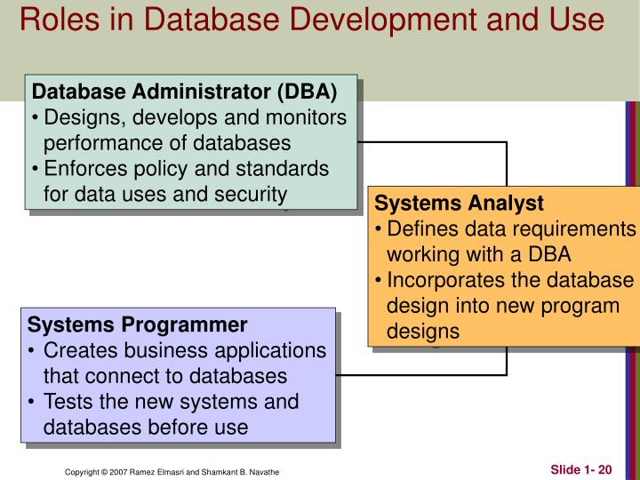 Roles in Database Development and Use