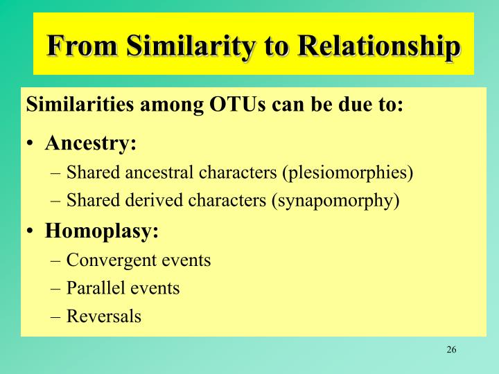 From Similarity to Relationship