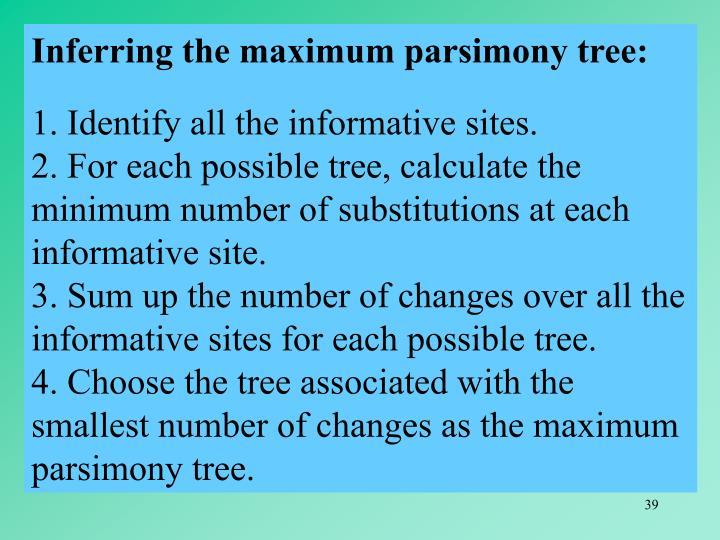 Inferring the maximum parsimony tree:
