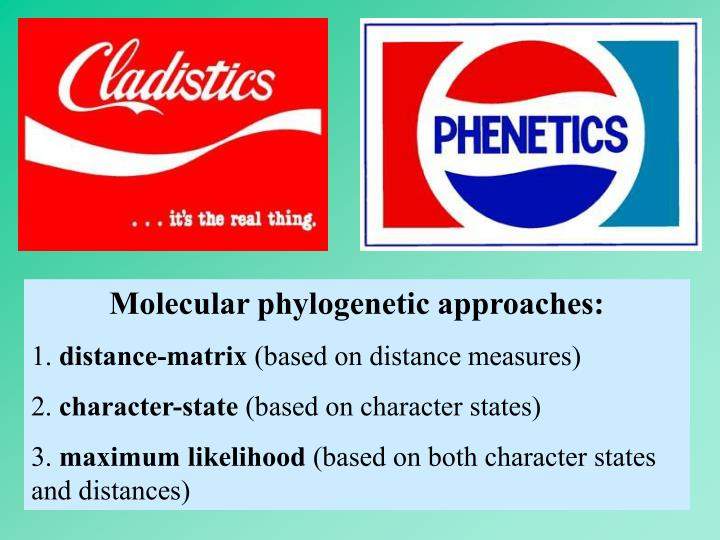 Molecular phylogenetic approaches: