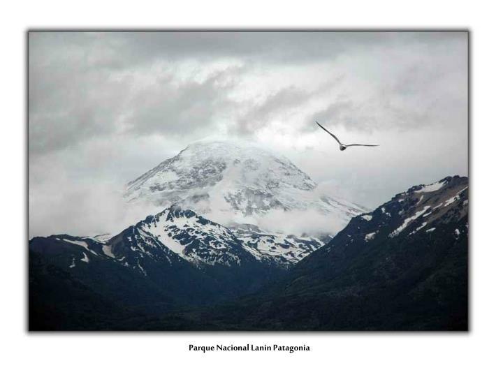 Parque Nacional Lanin Patagonia