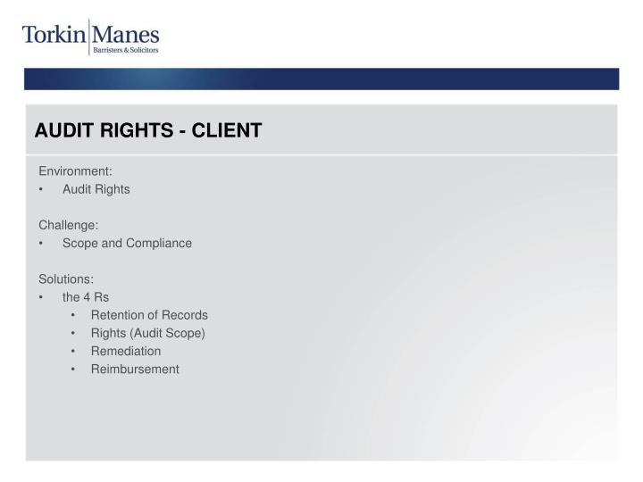 AUDIT RIGHTS - CLIENT