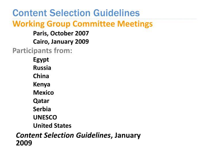 Working Group Committee Meetings