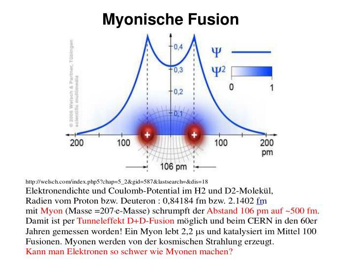Myonische Fusion