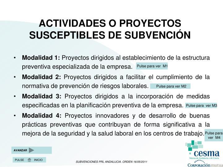 ACTIVIDADES O PROYECTOS SUSCEPTIBLES DE SUBVENCIÓN