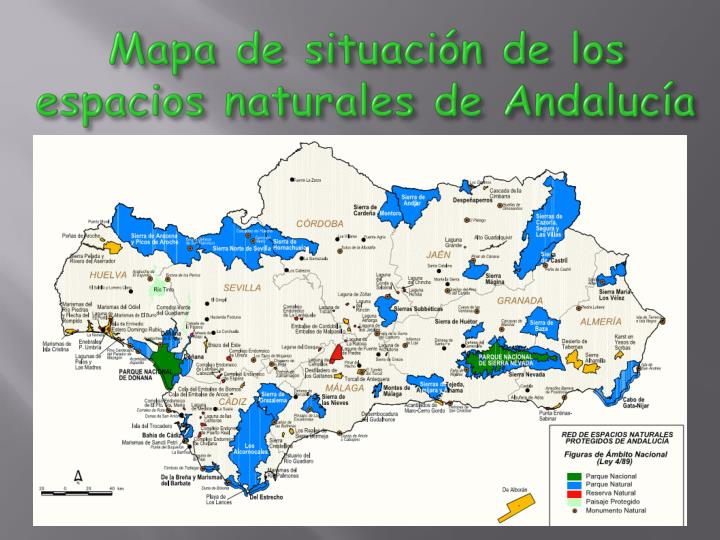 Mapa de situación de los espacios naturales de Andalucía
