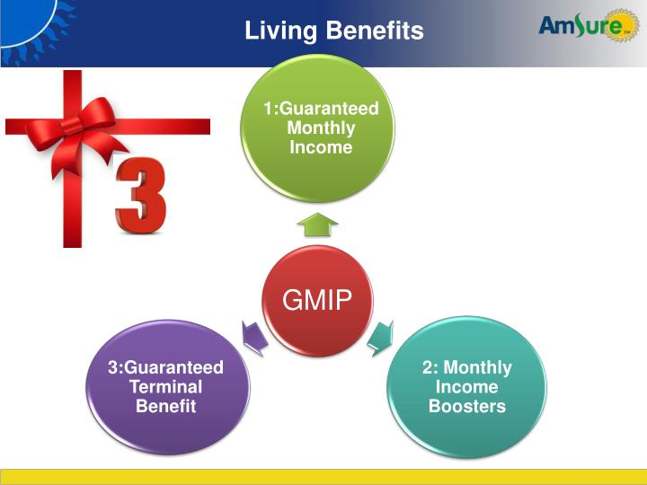 1:Guaranteed Monthly Income