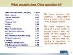 what products does china specialize in