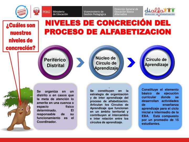 NIVELES DE CONCRECIÓN DEL PROCESO DE ALFABETIZACION