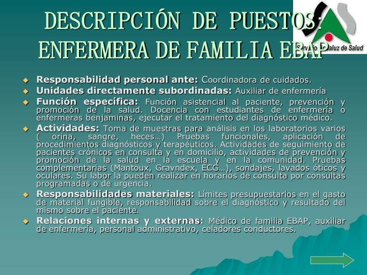 DESCRIPCIÓN DE PUESTOS