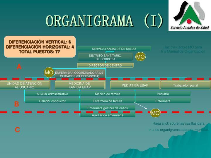 ORGANIGRAMA (I)
