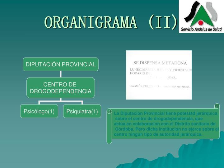 ORGANIGRAMA (II)