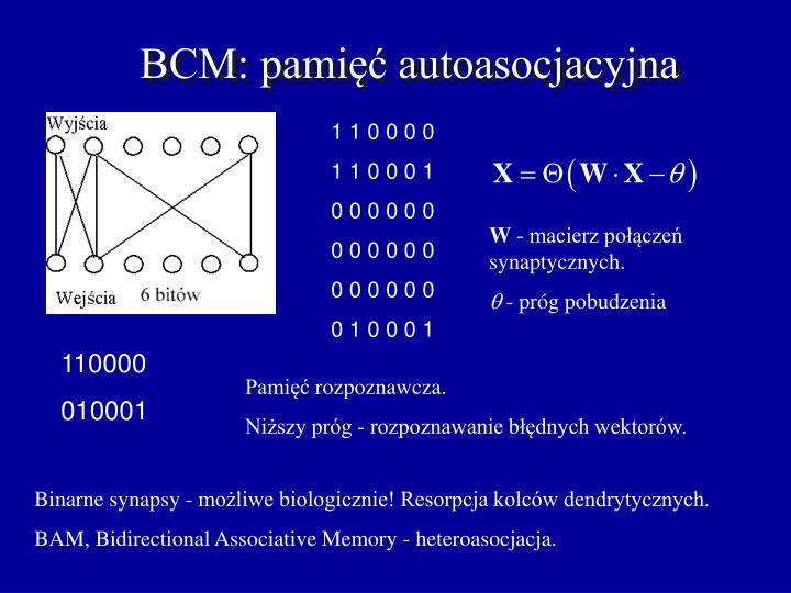 BCM: pamięć autoasocjacyjna