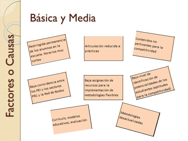 Básica y Media