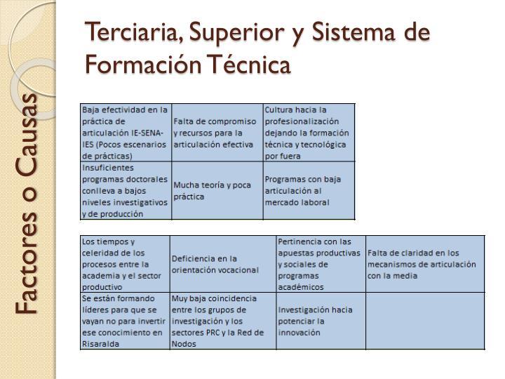 Terciaria, Superior y Sistema de Formación Técnica