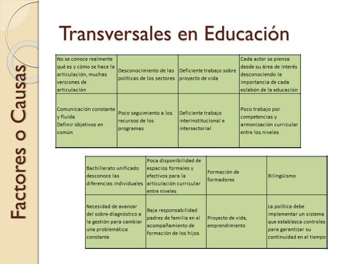 Transversales en Educación