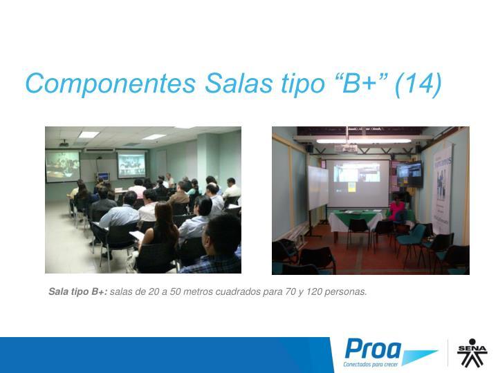 """Componentes Salas tipo """"B+"""" (14)"""