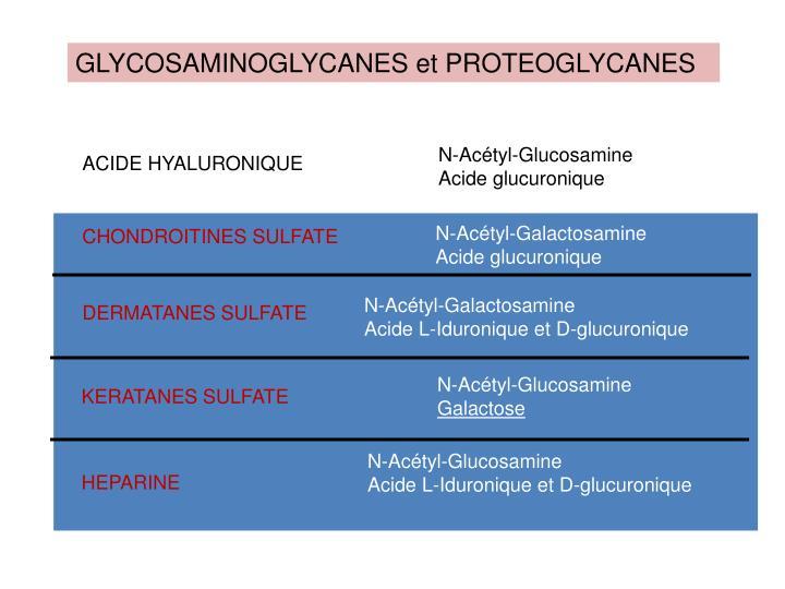 GLYCOSAMINOGLYCANES et PROTEOGLYCANES