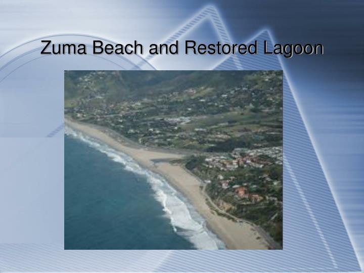 Zuma Beach and Restored Lagoon