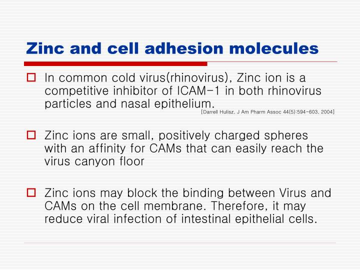 Zinc and cell adhesion molecules