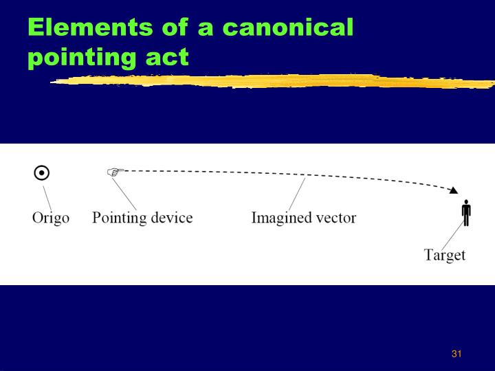 Elements of a canonical pointing act