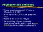 phylogeny and ontogeny