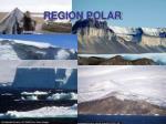 region polar