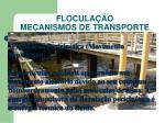 flocula o mecanismos de transporte