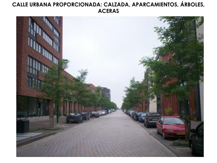 CALLE URBANA PROPORCIONADA: CALZADA, APARCAMIENTOS, ÁRBOLES, ACERAS