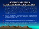 indigenous peoples cosmovision on tk protection