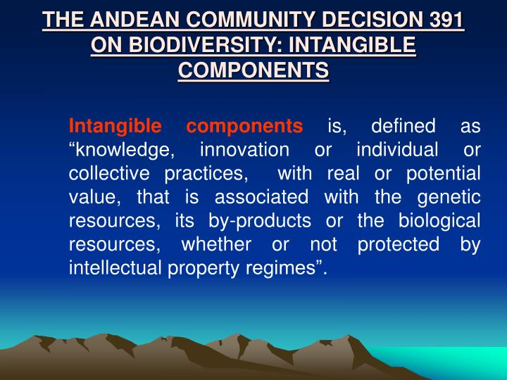 THE ANDEAN COMMUNITY DECISION 391  ON BIODIVERSITY: INTANGIBLE COMPONENTS