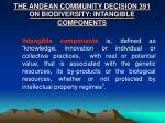 the andean community decision 391 on biodiversity intangible components
