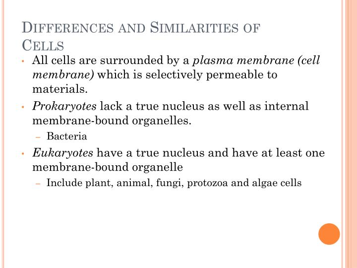 Differences and Similarities of Cells