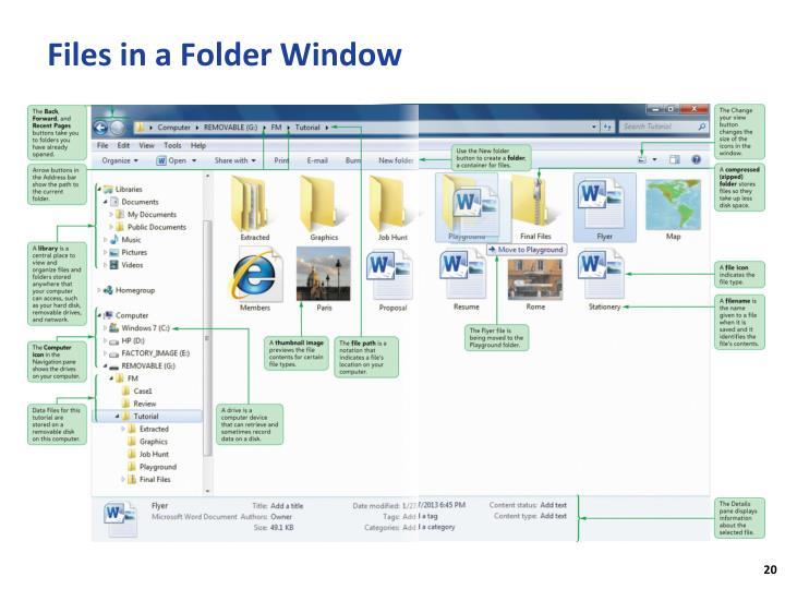 Files in a Folder Window