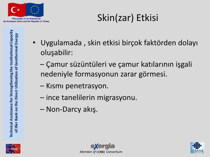Skin(zar) Etkisi