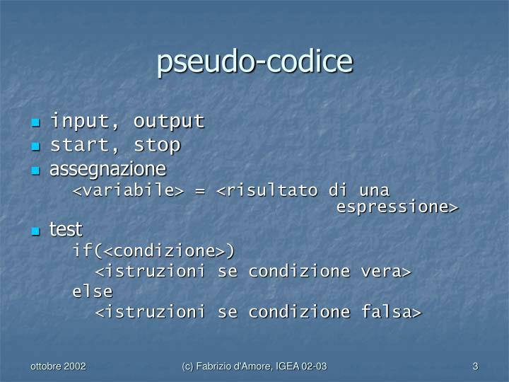 pseudo-codice