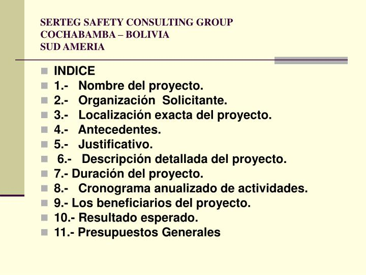 SERTEG SAFETY CONSULTING GROUP