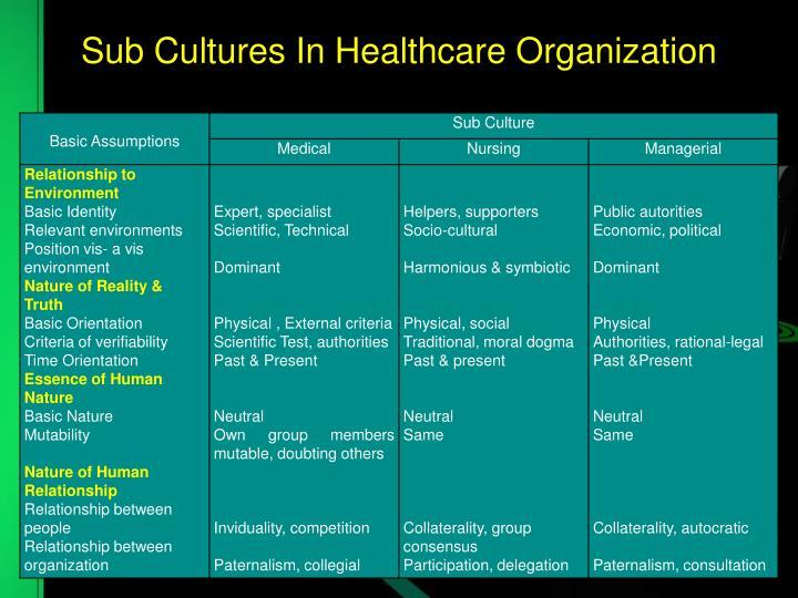 Sub Cultures In Healthcare Organization