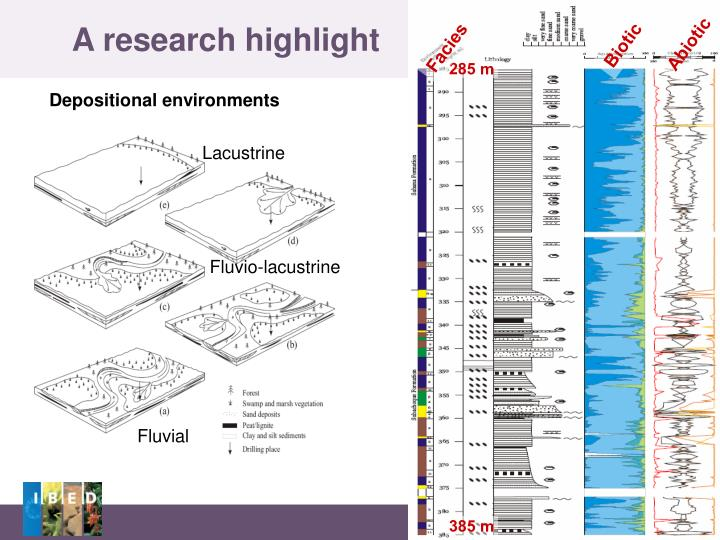 A research highlight