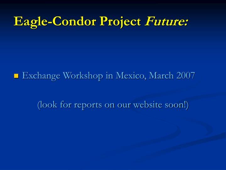 Eagle-Condor Project