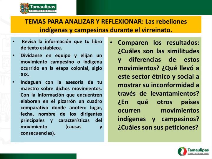 TEMAS PARA ANALIZAR Y REFLEXIONAR: Las rebeliones indígenas y campesinas durante el virreinato.