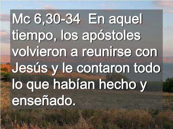 Mc 6,30-34  En aquel tiempo, los apóstoles volvieron a reunirse con Jesús y le contaron todo lo que habían hecho y enseñado.